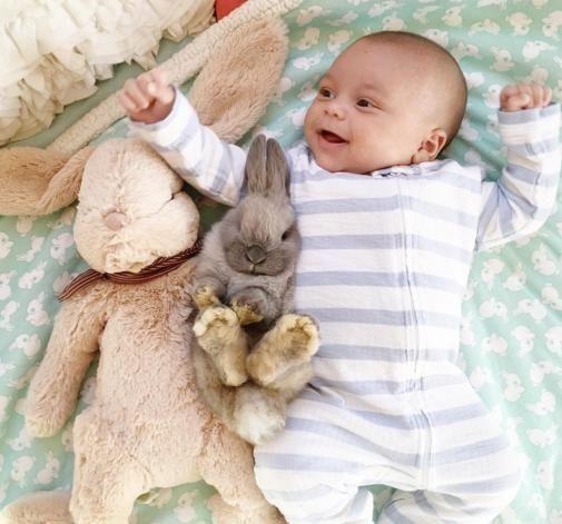 Chłopiec i jego króliczki – te zdjęcia podbiją twoje serce. Zobacz je koniecznie!