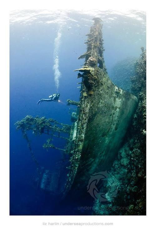 """Upright Shipwreck"" at Nono Lagoon, Solomon Islands. This tuna boat ran into the reef then slid down the drop-off until it came to rest upright on a deep ledge.เรือจมแนวตั้งBy: Liz Harlin - sunken boat"