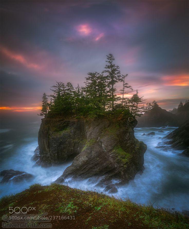Sea stack with trees of Oregon coast (William Lee / PORTLAND / United States) #X-T20 #landscape #photo #nature
