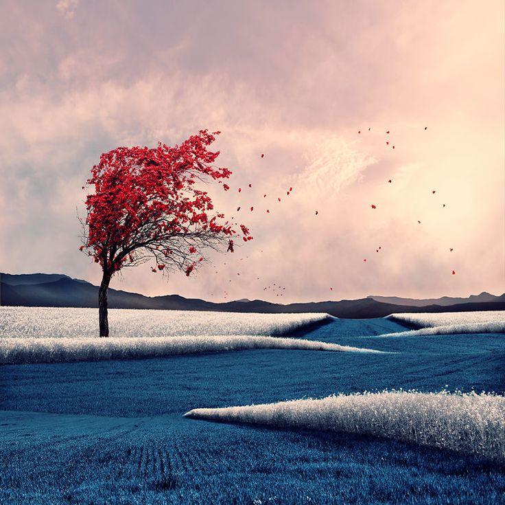Caras Ionut from Romania - I don't have any problems expressing myself in public space.