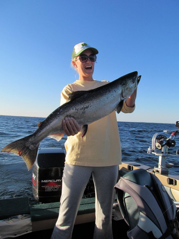17 best images about michigan fishing on pinterest for Fishing lake michigan