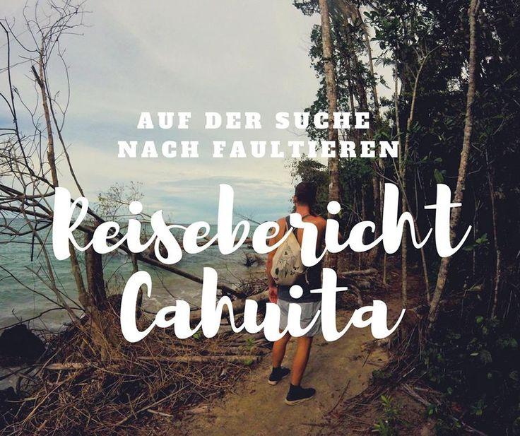 In Cahuita haben wir im angrenzenden Cahuita Nationalpark viel Zeit auf der Suche nach Faultieren verbracht und am Ende wurden wir endlich fündig.