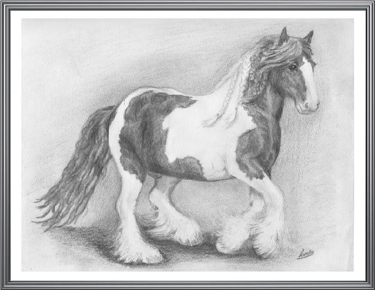 Paarden Tekeningen Getekend Google Zoeken Drawings Of