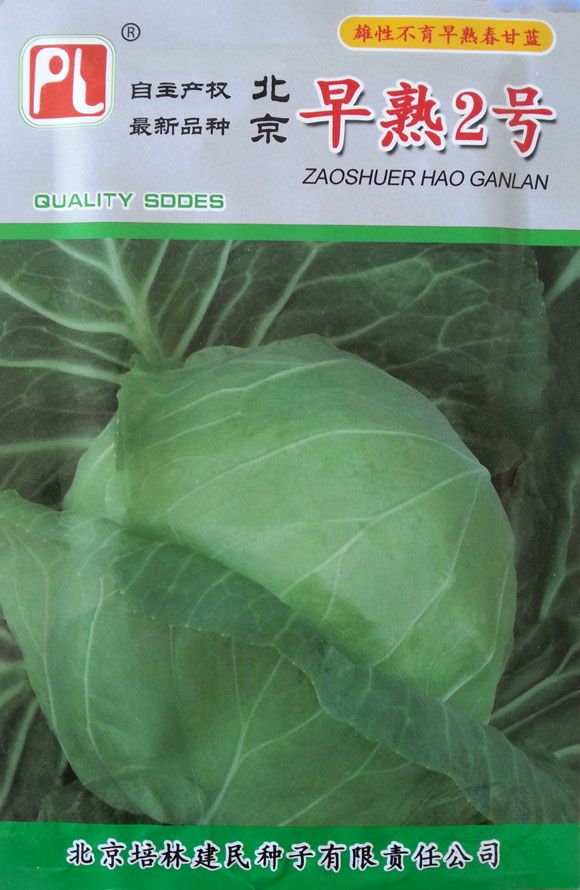 Vegetable seeds Cabbage seeds precocious puberty No. 2 yielding 7 g / bag