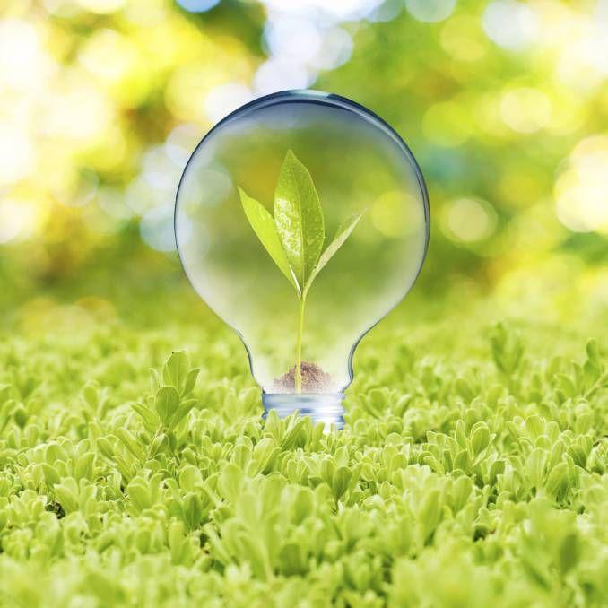 Sustainable light.