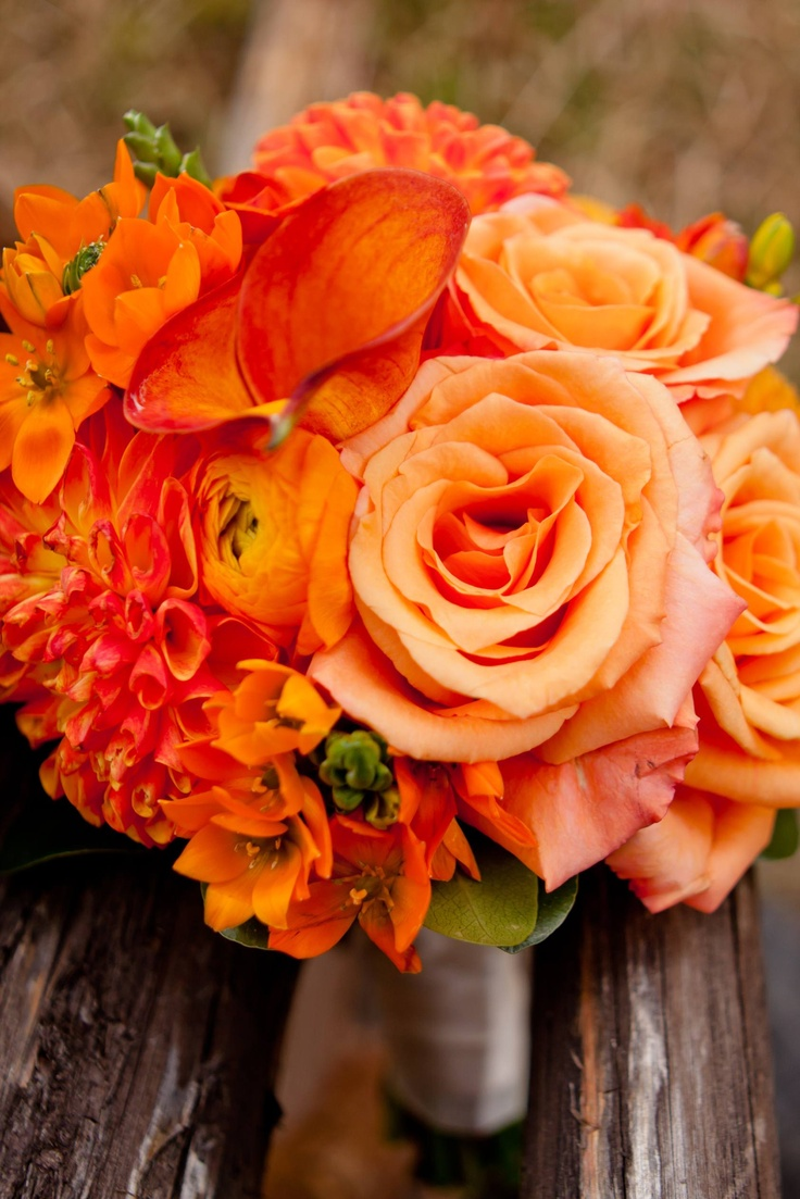Картинки букеты оранжевые