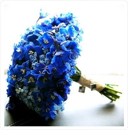 Comprise Your Whole Bouquet Of Natural Something Blue Flowers Irises Delphinium