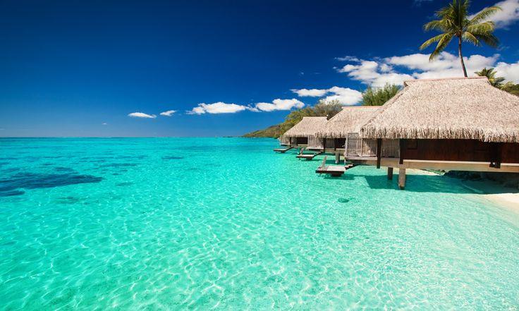 #Maldives . Regroupées en 26 atolls, les 1 190 îles de l'archipel apparaissent comme un joli collier de perles dans l'océan Indien. Célèbre pour ses plages et ses fonds marin, les Maldives font rêver. Ce petit paradis tropical est une destination incontournable pour les voyageurs qui souhaitent passer des vacances paisibles et sereines. http://vp.etr.im/XY