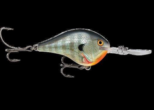 1000 images about crappie bluegill catfish fishing on for Catfish fishing gear