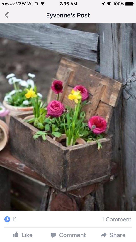 Mejores 75 Im Genes De Garden En Pinterest Jardiner A  # Muebles Boj Gijon