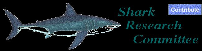 'Save the Sharks — Save the Oceans' - this organization conducts research at our very own Redondo Beach!