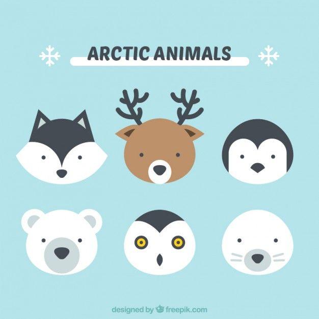 Cute arctic animals Vector   Free Download