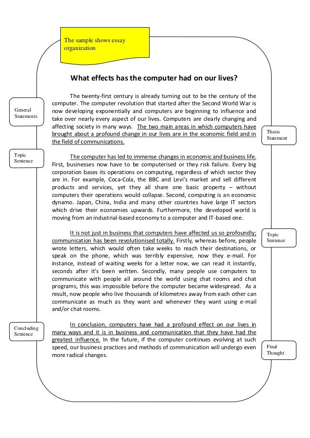 Essay Cause And Effect Example Sample
