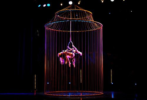The golden cage aerial act | Duo | Aerials | Circus performers | Performers | Entertainment Agency | Corporate Event Entertainment