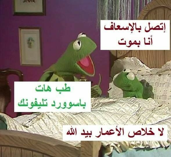Pin By Q N On أبتسم Fun Quotes Funny Funny Joke Quote Arabic Funny