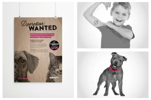 Operation Wanted. Branding and campaign idea. Increased awareness and vets saw a 600% jump in pet desexing during the promotion period. #humperdink