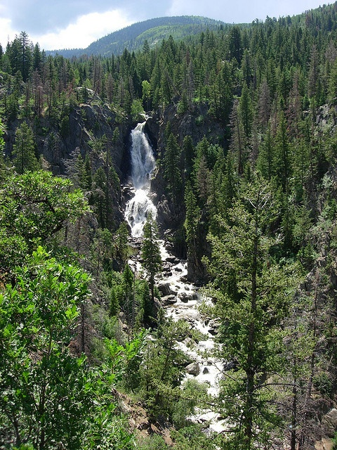 22 best images about colorado on pinterest lakes spring for Colorado springs fishing