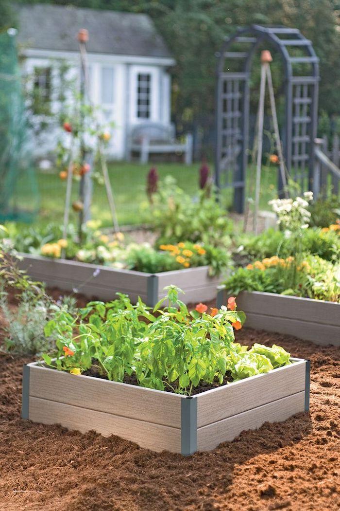 Fresh Hochbeet bef llen ein kleines Hochbeet mit winzigen gr nen Pflanzen Kreative Ideen f r Gartenzubeh r Pinterest