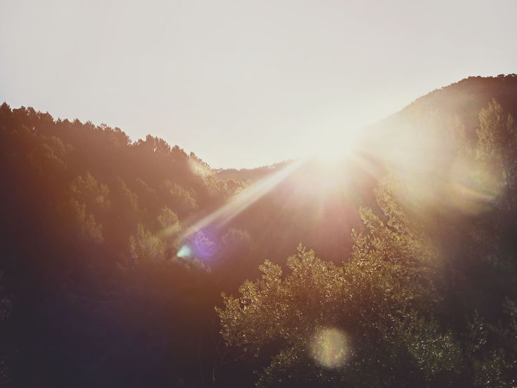 Buenos días sol! Mallorca