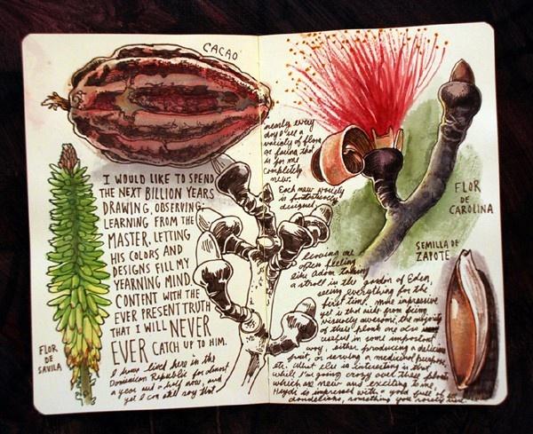 / sketchbooks
