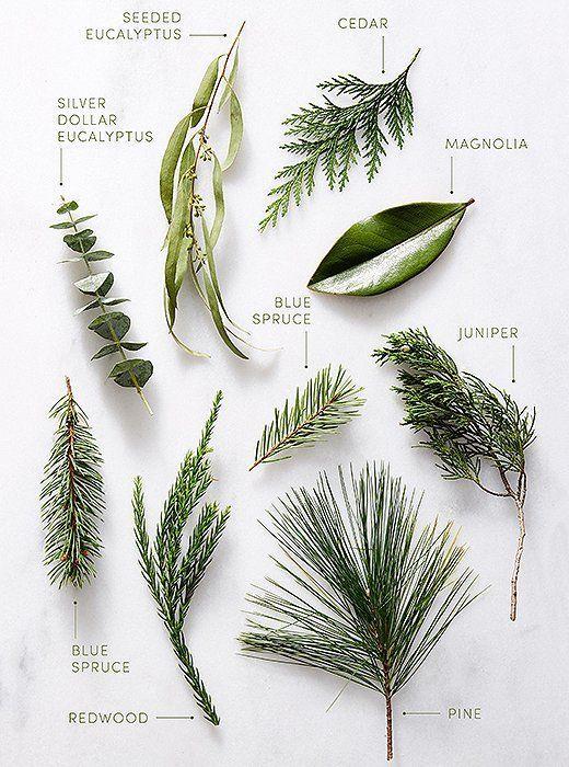 seasonal greenery