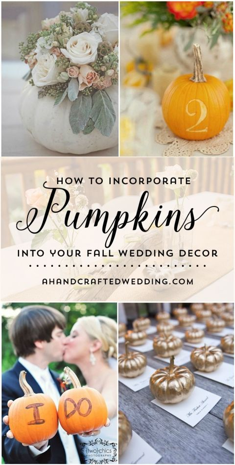 I LOVE the idea of scattering tiny white pumpkins throughout our wedding for a bit of whimsy and romance! Check out these 10 Pumpkin Wedding Decor Ideas from ahandcraftedwedding.com