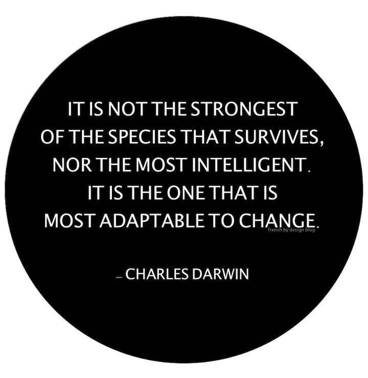 Adapting to change is key to personal success, financial success and business success. Make a clear decision! If that doesn't work, make another, and another, and another. Keep doing this until you break through.