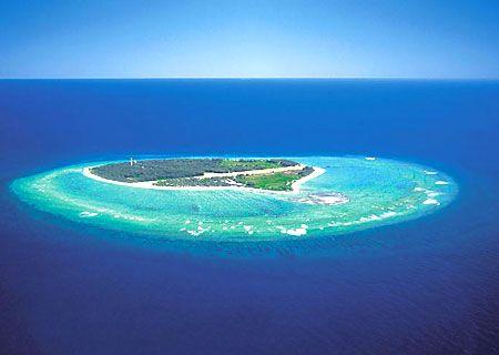 Lady Elliot Island, Great Barrier Reef, Aus