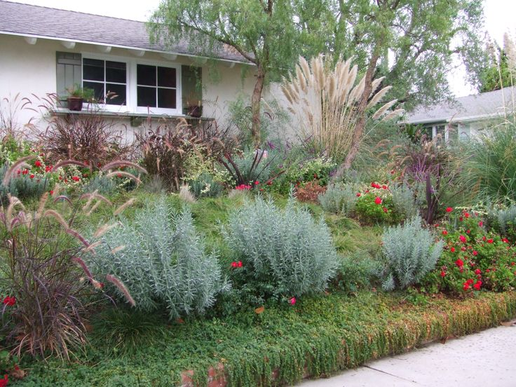 32 best Drought tolerant gardens images on Pinterest Landscaping - drought tolerant garden designs