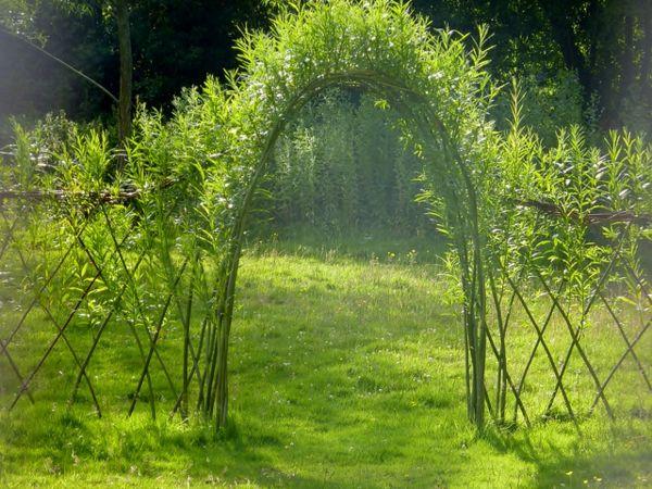 Weidenzaun selber machen für eine natürliche Gartengestaltung!