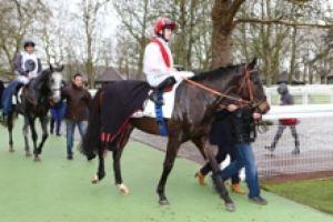 demain samedi 30 mai 2015 longchamp plat 16 chevaux