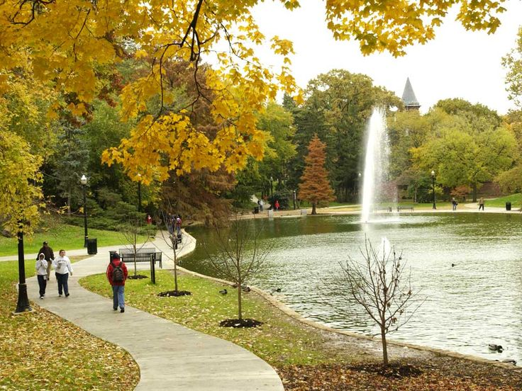 This is from Ohio State's campus and is a view of Mirror Lake.  I love the beauty of this campus, especially in Autumn!