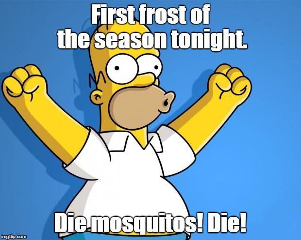 Woohoo Homer Simpson   First frost of the season tonight. Die mosquitos! Die!   image tagged in woohoo homer simpson   made w/ Imgflip meme maker