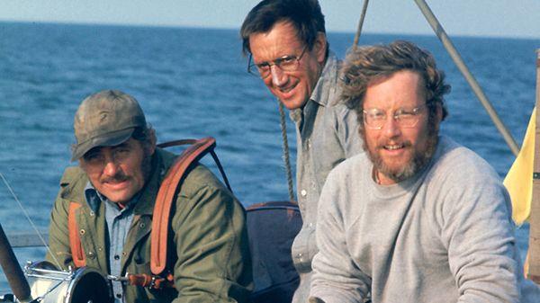 """Roy Scheider in """"Jaws"""" (Steven Spielberg, 1975)"""