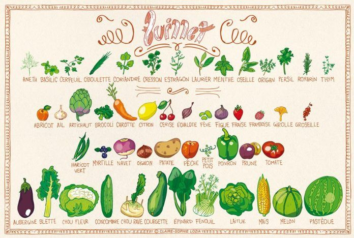 Comme chaque mois, sur mrmondialisation.org, voici le calendrier illustré des fruits et légumes du mois signé Claire-Sophie.  Vous cherchez à responsabiliser vos choix de consommer ? Pourquoi ne pas commencer par l'essentiel ? Cette liste visuelle développée par Claire-Sophie, illustratrice engagée, propose de cibler en un coup d'œil les fruits et légumes de saison qui poussent en ce moment en France, en incluant les Dom Tom. D'ici quelques mois, le calendrier annuel sera bouclé et pu...
