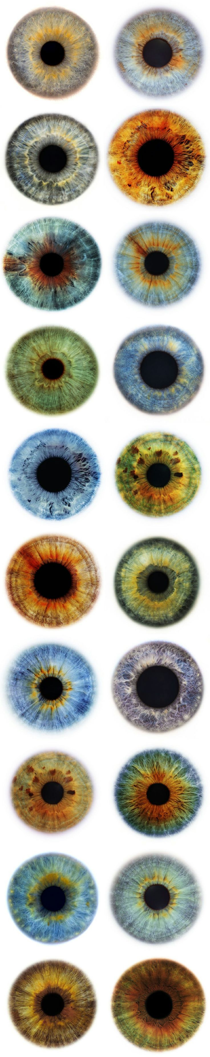 """Eyes are the windows to the universe"" - Eye Images by Rankin - Short URL: (http://bit.ly/1obylqw)"