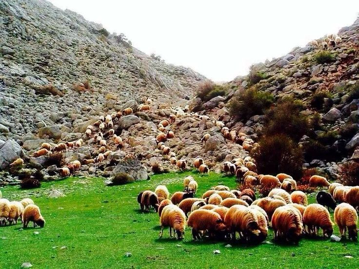 afghanistan the beautiful country..