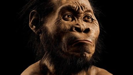 Homo naledi, a new species of human ancestor found in South Africa, may have…