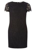 Womens Petite Black Lace Shift Dress- Black