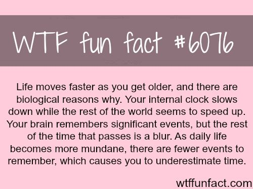 Why life seems like it's moving faster - WTF weird & interesting fun facts
