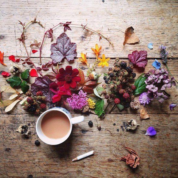 COFFE!! RENOVARSE INSPIRARSE CONTINUAR E INNOVAR