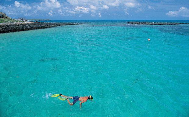 Mergulho no Parque Nacional Marinho de Abrolhos, Bahia