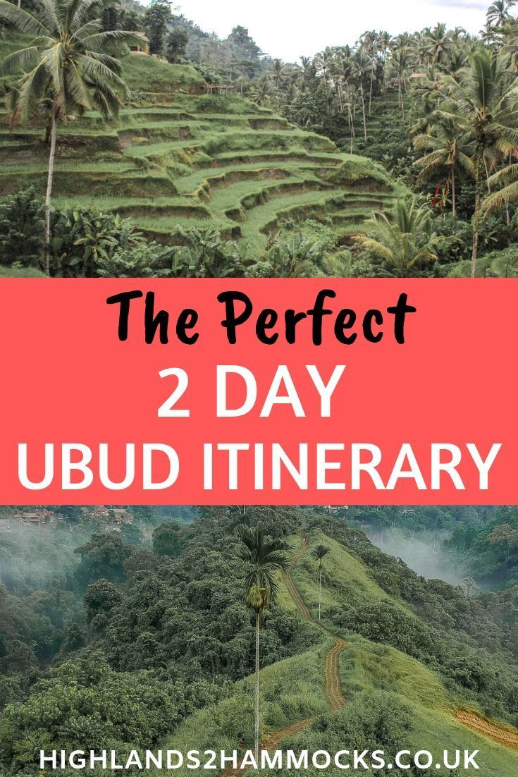The Ultimate Itinerary for Ubud – Three Days in the Jungle