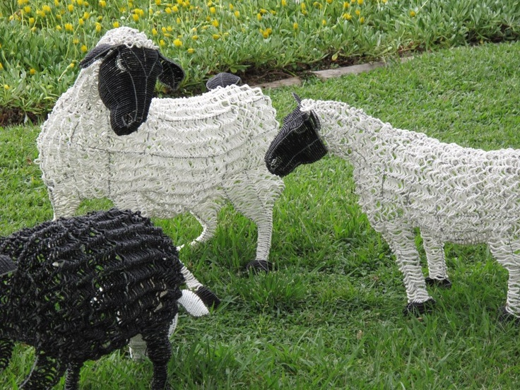 south african beaded sheep
