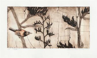 New Zealand Printmakers: Andrea Mae Miller
