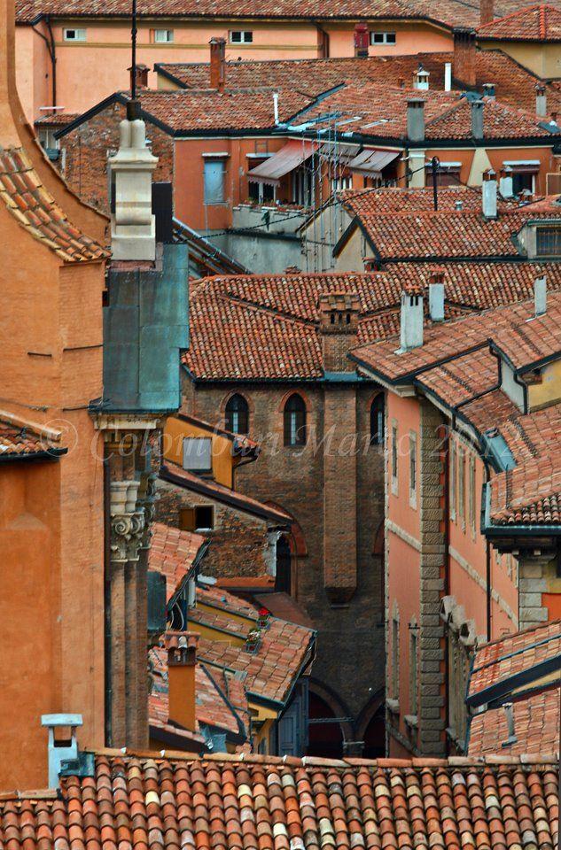 Bologna la rossa ... i tetti , foto di Marco Colombari
