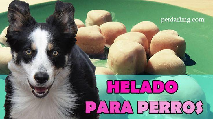 HELADO para PERROS Receta ♥ Vamos a cocinar para perros y en unos minutos haremos un HELADO para PERROS casero de yogur. ♥ Receta fácil Fotos y Video!