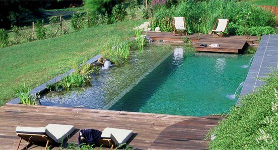 piscina natural, ecologica.   Es sistema de depuración natural para conservar la calidad del agua en vez de recurrir a productos químicos.  Es una mezcla de estanque y piscina y además es enriquecedora para cualquier tipo de jardín.  Evita problemas de irritación de piel, mucosas y ojos producto de los químicos,  la creación de un ecosistema equilibrado lleva a cabo por si solo el mantenimiento de la calidad del agua.