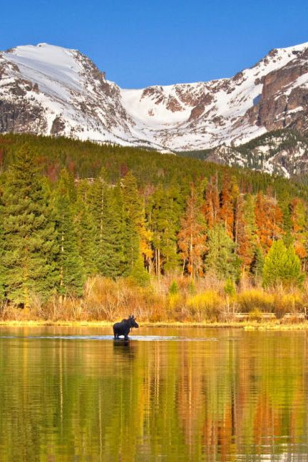 176 Best Images About Rocky Mountain National Park On