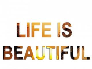 Free Life Is Beautiful Wallpapers, Life Is Beautiful Pictures, Life Is Beautiful Photos, Life Is Beautiful #12184 1280X800 wallpaper